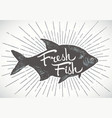 fresh fish vector image vector image