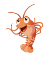 Funny shrimp vector image
