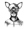 hand drawn toy terrier hipster vector image vector image