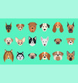 set dogs vector image vector image