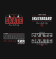 set skateboard new york t-shirt brooklyn vector image