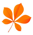 chestnut leaf icon flat style vector image vector image