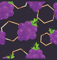 seamless grapes background vector image vector image