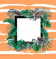tropical exotic leaves summer banner vector image vector image
