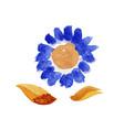 watercolor floral set vector image vector image