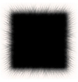 White fur frame background with empty space vector image vector image