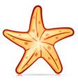 decorative starfish symbol design vector image
