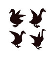 duck icon design template isolated vector image
