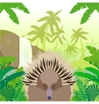 Echidna on the Jungle Background vector image vector image