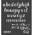 Hand drawn ink alphabet vector image vector image