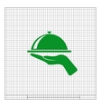 Hot proper meal plate icon vector image