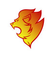 lion head in flames symbol icon vector image