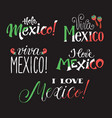 viva mexico wording vector image