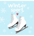 Winter card with ice skates vector image