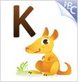 animal alphabet for kids k for kangaroo vector image