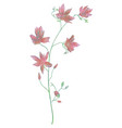 drawn watercolor flower vector image vector image