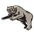 grizzly bear attacking woodcut