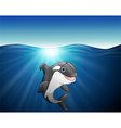 killer whale cartoon on the sea vector image vector image