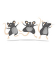 three funny gray rats in a jump vector image