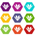 eco flower icons set 9 vector image vector image