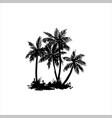 hand drawn tropical palm vector image vector image