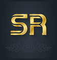s and r initial golden logo sr - metallic 3d icon vector image vector image