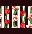 seamless pattern with red and white tulips vector image