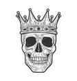 skull in crown sketch vector image