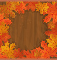 frame with autumn colorful leaves vector image