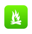 bonfire icon green vector image
