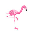 colorful cartoon flamingo looking down standing on vector image vector image