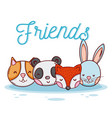 cute animal friends cartoon vector image