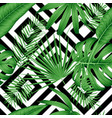 exotic seamless pattern with tropical leaves on a vector image vector image