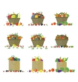Fruits and vegetables in basket set vector image