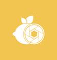 lemon shutter photography logo design template vector image