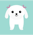 maltese dog puppy white lapdog animal icon set vector image