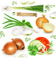 onion set realistic icons vector image vector image