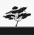 silhouette stencil tree vector image vector image