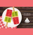 watermelon ice cream on white plate vector image