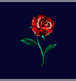 beautiful rose flower in red colors floral design vector image