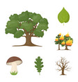 forest and nature cartoon icons in set collection vector image