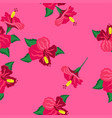 seamless texture with hibiscus vector image vector image