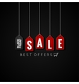 Black Friday sale tags on background