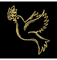Golden glitter Dove of Peace on background vector image vector image