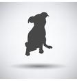 Puppy icon vector image vector image