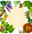 recipe paper with herb spice and leaf vegetable vector image vector image