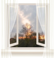 Background with an open window and an evening vector image vector image