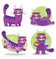 cheshire cat to the fairy tale alices adventures vector image vector image