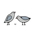 couple of cute city birds by the meal vector image