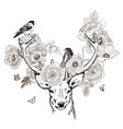 hand drawn realistic deer surrounded by flowers vector image vector image
